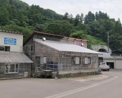 Kaneko Koi Farm, de Kujaku en Shiro Utsuri specialist