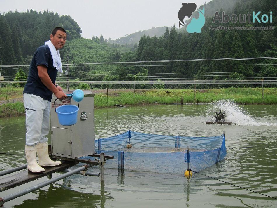 Teruyuki Hiroi aan het voeren