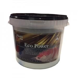 Kinshi Eco Power
