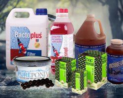 Beste bacteriën voor de vijver: tips en advies