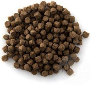 Koivoer pellet