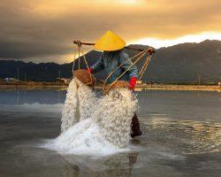 Draadalgen bestrijden met zout: Zout tegen algen gebruiken