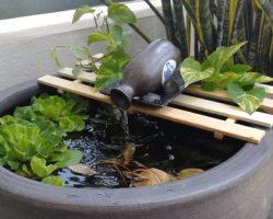 Een mini vijver maken als terras of balkonvijver met vissen