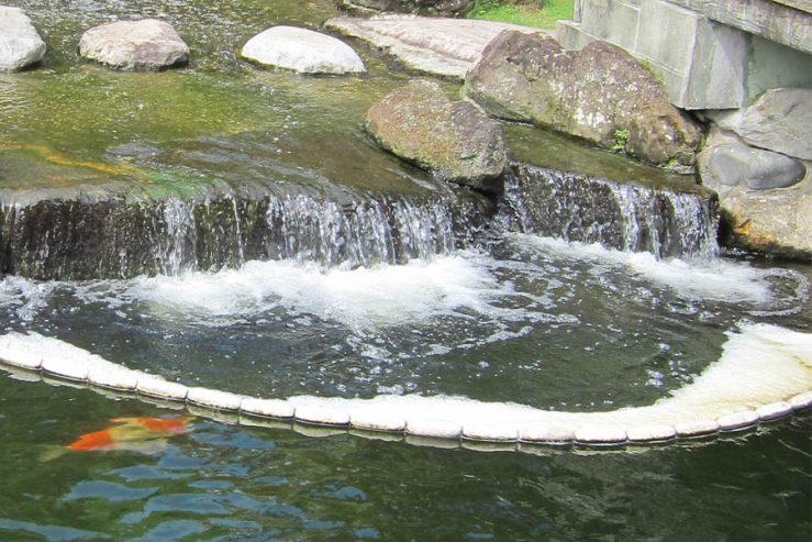 Waterval met schuim op de vijver