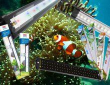 Beste aquarium LED verlichting en alles over LED verlichting