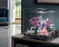 biOrb aquarium: werking, onderhoud, modellen en tips