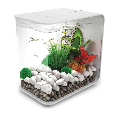 biOrb aquarium Flow
