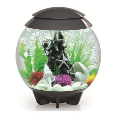 biOrb aquarium Halo